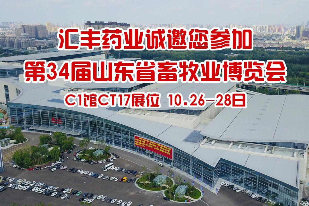 手机展会banner