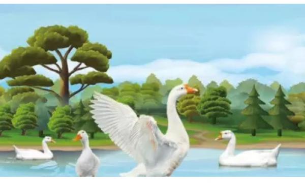 中国国际集约化水禽产业发展大会,火狐体育手机官网与您相约成都